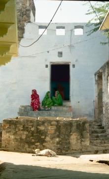 India_Rajasthan_Pushkar_CamelFair_05