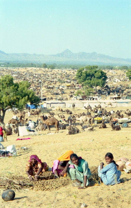 India_Rajasthan_Pushkar_CamelFair_31