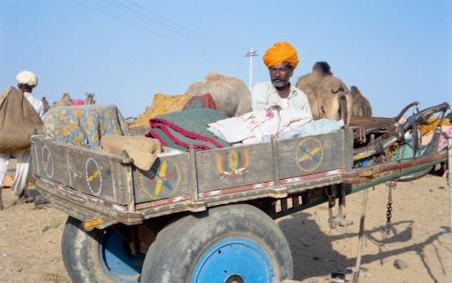 India_Rajasthan_Pushkar_CamelFair_40