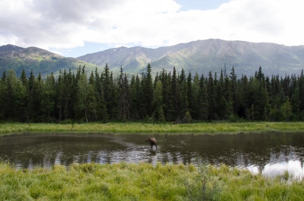 Alaska_4